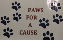 Paws for a Cause