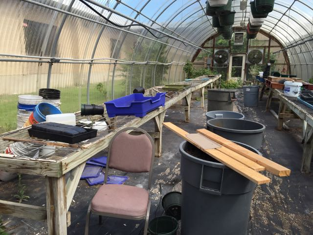 The greenhouse was filled with broken furniture, rusty tools, and unorganized planting supplies.